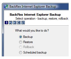 BackRex IE backup & restore