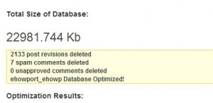 How to Clean Up and Optimize Your WordPress Database