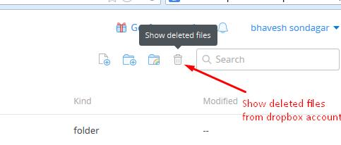 Checking Deleted Files from Dropbox account