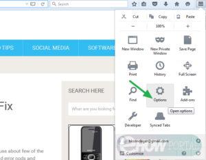 Make Google My Homepage in Mozilla Firefox