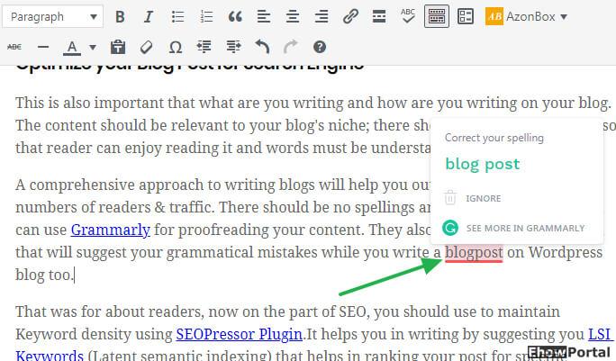 Use Grammerly WordPress Blog Post